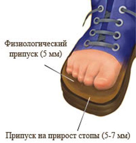 приобретя как подобрать обувь если пальцы длинные фото сможешь гвоздь