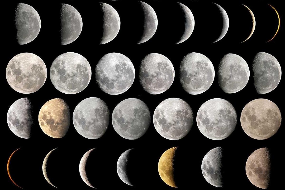 Хризантем, луна на картинках с названиями