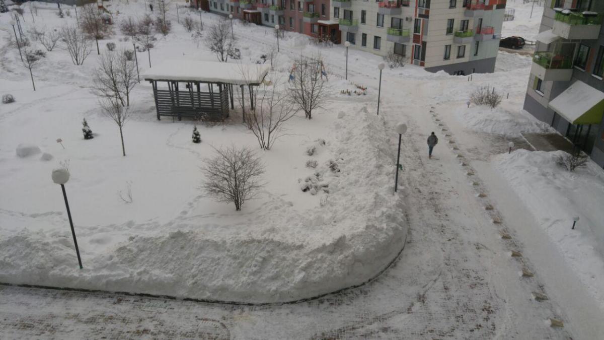 Типичный двор на далёкой окраине Москвы. Его чистят по несколько раз на дню.