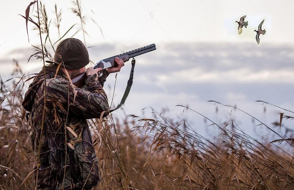 этом картинки охотники на птиц красивые идеи