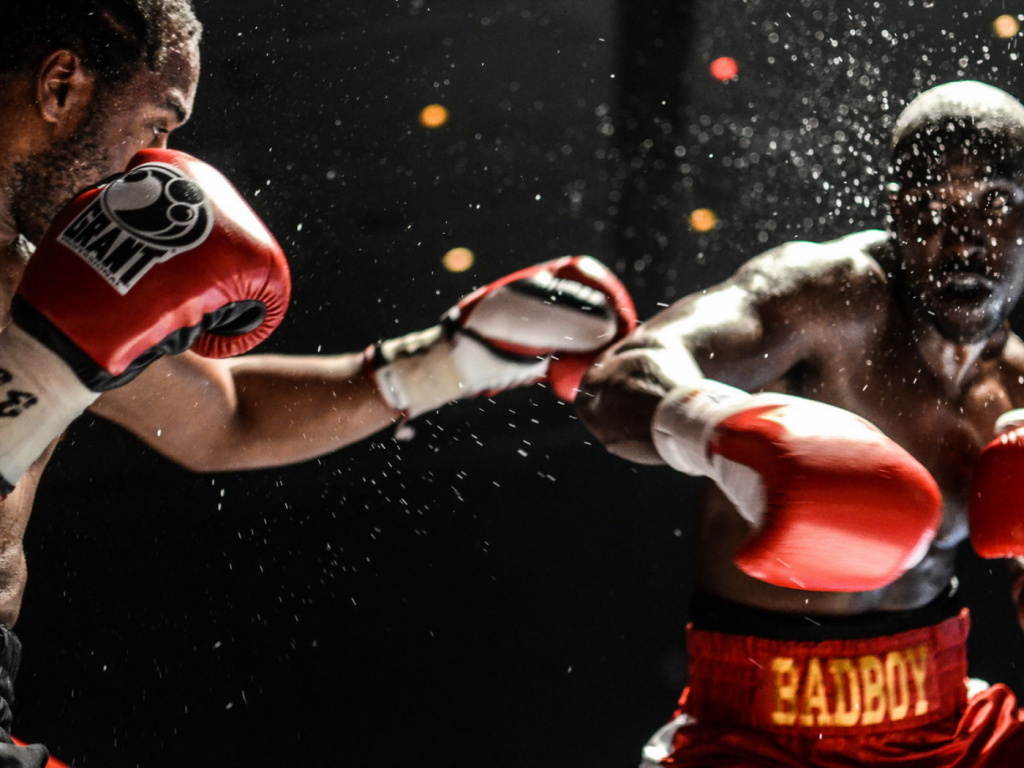 Почему многие предпочитают делать ставки на бокс