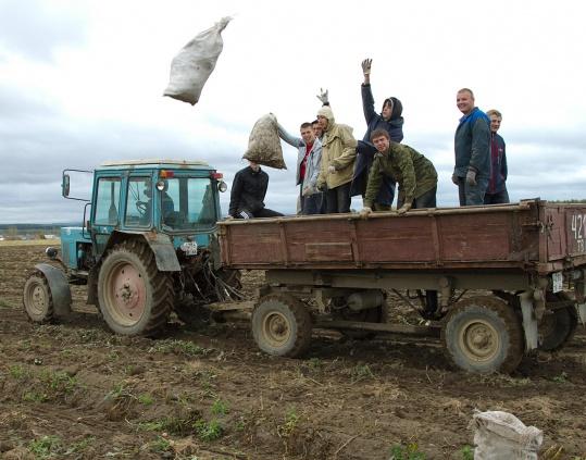 Прикольные фото уборочной в колхозе